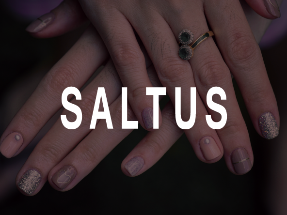 saltus_banner.png